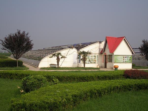 福州高效节能日光温室
