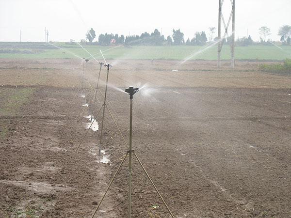 池州大田喷灌
