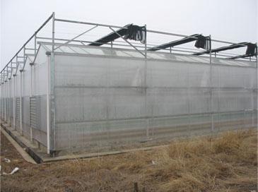 池州玻璃温室